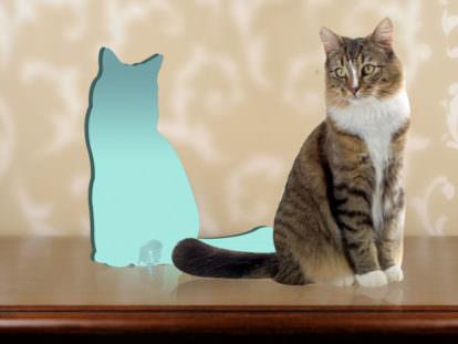 Fotofigur Katze